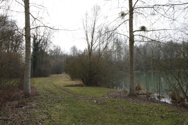 etang-2-photo-jj-perrot-systeme-noir